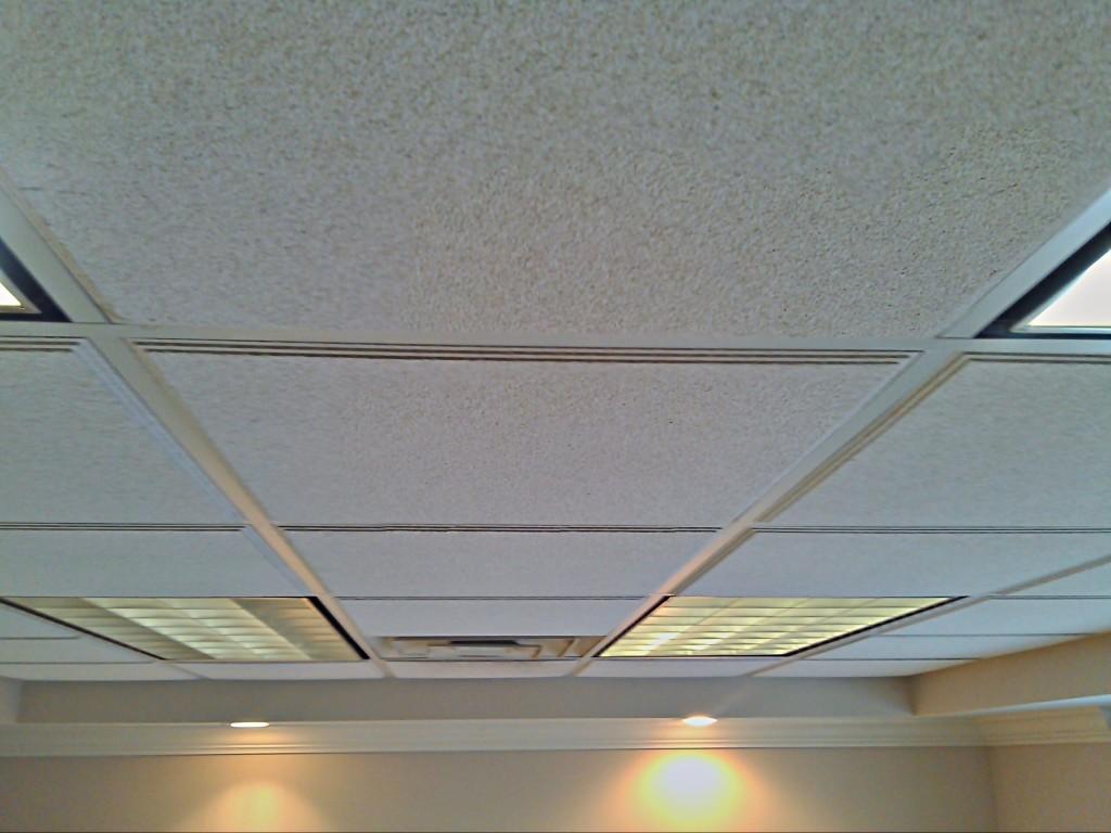 Acoustical_Ceiling1